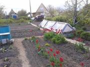 Продам садоогород «Пламя-3»