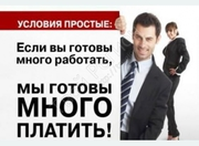 Рекламный оформитель