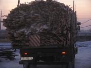 Горбыль,  древесные отходы с пилорамы